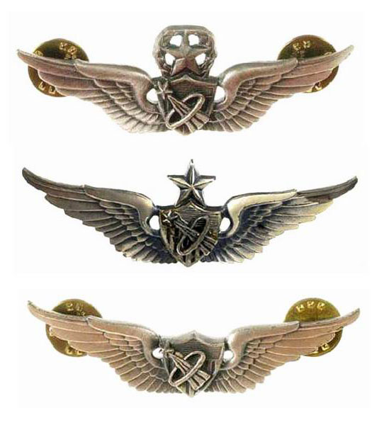 army astronaut badge - 525×600